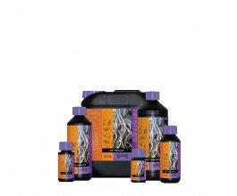 Atami B´cuzz Root Stimulator, 5L